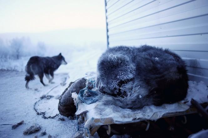 Thăm thú ngôi làng lạnh nhất thế giới đón năm mới - ảnh 13