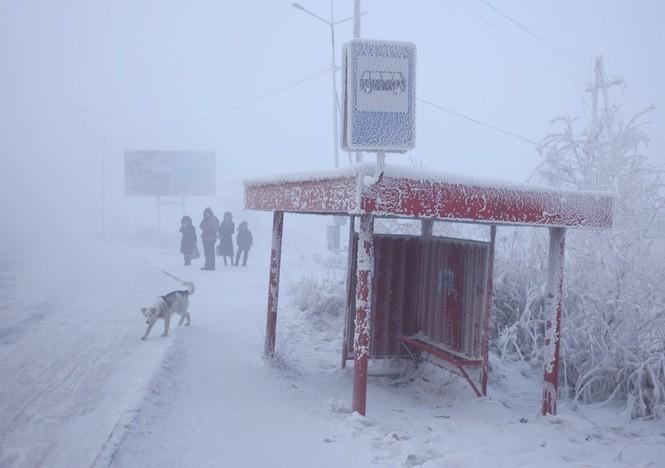 Thăm thú ngôi làng lạnh nhất thế giới đón năm mới - ảnh 4