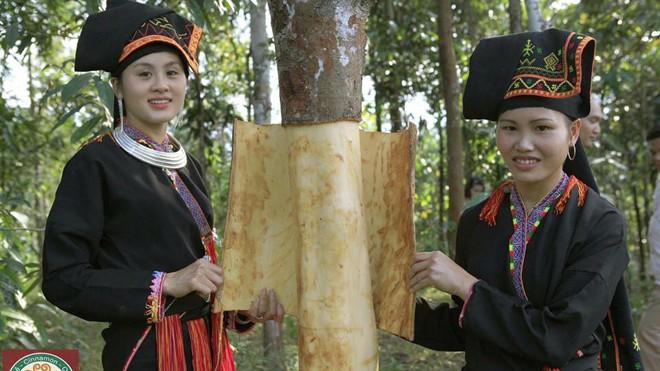 Mãn nhãn ngắm thiếu nữ Dao trong rừng quế       - ảnh 1