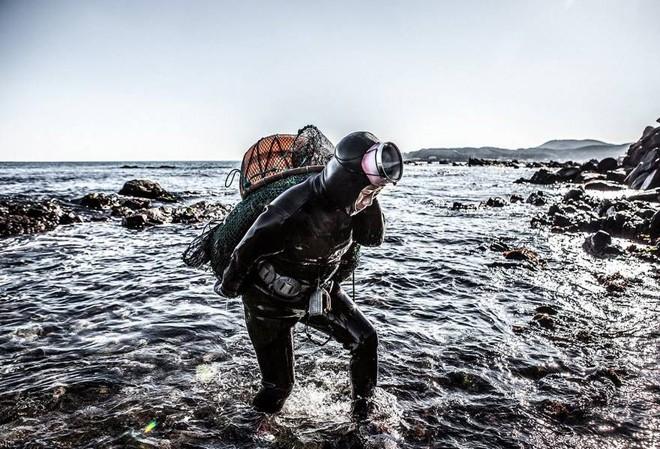 Những 'nàng tiên cá' cuối cùng ở Hàn Quốc  - ảnh 2