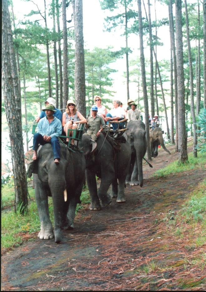 Tuyền Lâm sẽ là Khu du lịch quốc gia đầu tiên - ảnh 2