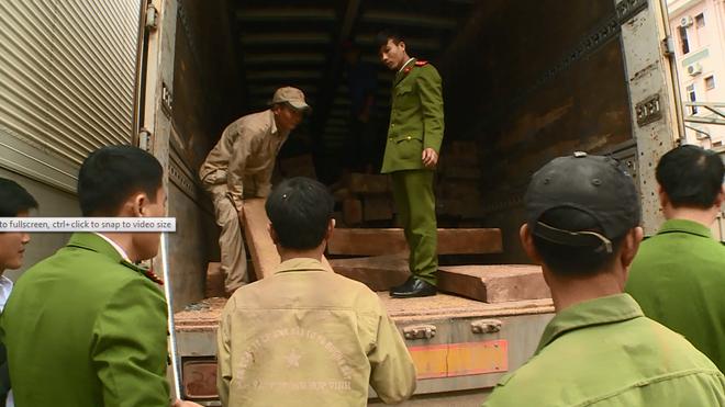 """Xe tải chở ngô """"đưa"""" gỗ Đinh Hương quý hiếm về Việt Nam - ảnh 1"""