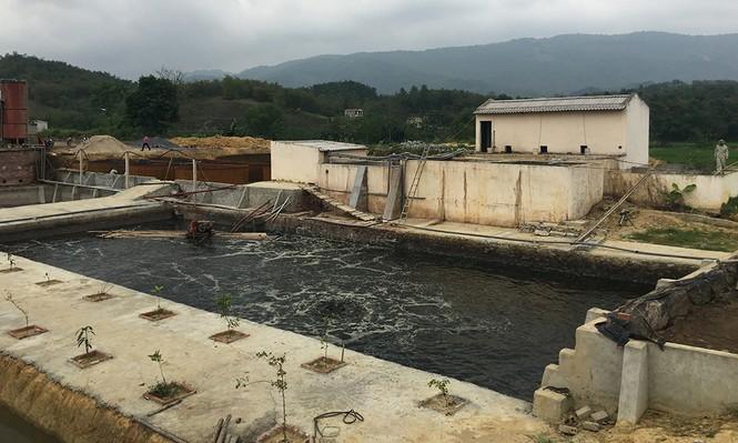 Vụ cá chết trên sông Âm: Tháo dỡ đường ống ngầm xả thải ra sông - ảnh 1