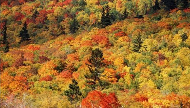 10 phong cảnh thiên nhiên sặc sỡ nhất thế giới - ảnh 5
