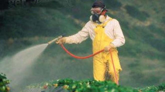 Nguyên tắc rửa rau loại bỏ chất gây ung thư - ảnh 1