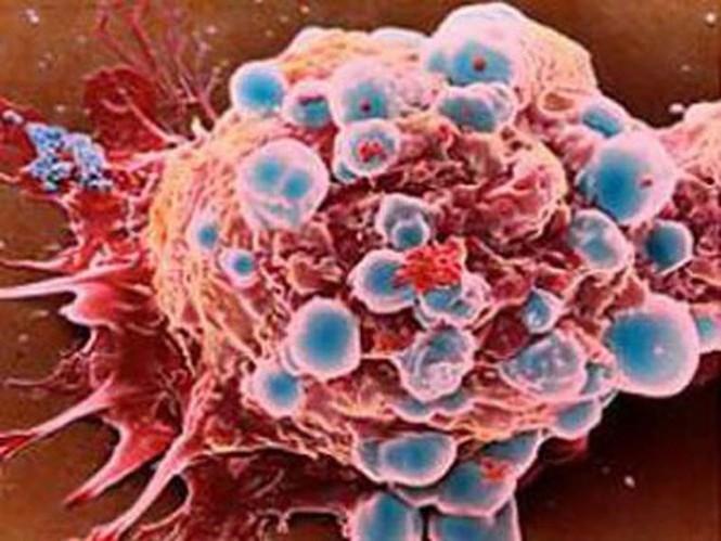 Nguyên tắc rửa rau loại bỏ chất gây ung thư - ảnh 2