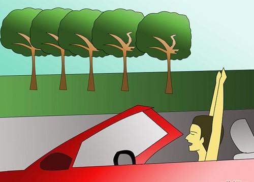 Bí quyết lái xe đường dài không mệt - ảnh 10