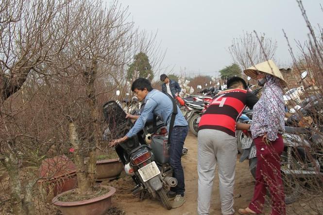 Giới trẻ đổ xô đi chụp ảnh, đường ra bãi đá tắc hàng giờ - ảnh 10