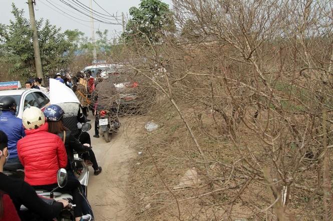 Giới trẻ đổ xô đi chụp ảnh, đường ra bãi đá tắc hàng giờ - ảnh 4