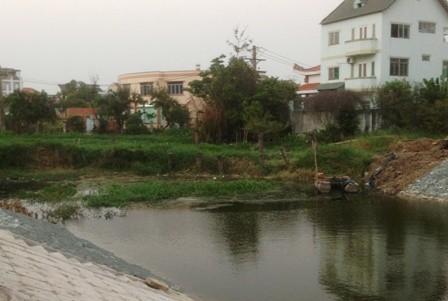 Khu dân cư kêu cứu vì bị... muỗi tấn công - ảnh 4