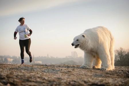 Gấu bắc cực khổng lồ lang thang trên đường phố London - ảnh 1