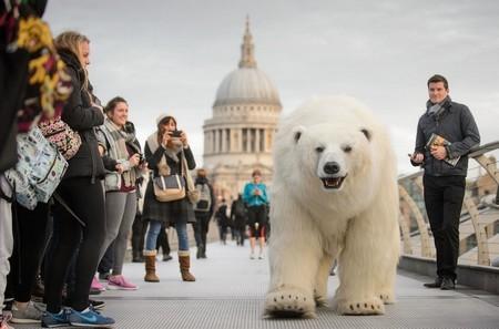 Gấu bắc cực khổng lồ lang thang trên đường phố London - ảnh 3