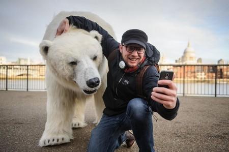 Gấu bắc cực khổng lồ lang thang trên đường phố London - ảnh 4