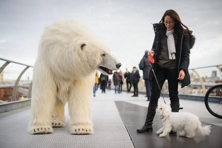 Gấu bắc cực khổng lồ lang thang trên đường phố London - ảnh 5