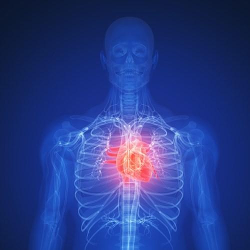 Cách phân biệt đau tim với đột quỵ - ảnh 1