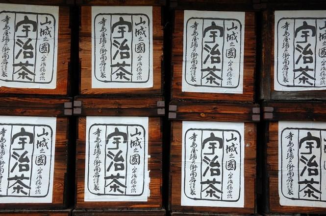 Say trà ở thiên đường trà sencha Nhật Bản - ảnh 3