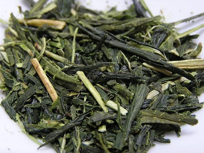 Say trà ở thiên đường trà sencha Nhật Bản - ảnh 4