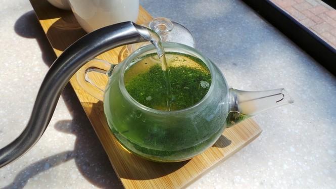 Say trà ở thiên đường trà sencha Nhật Bản - ảnh 5