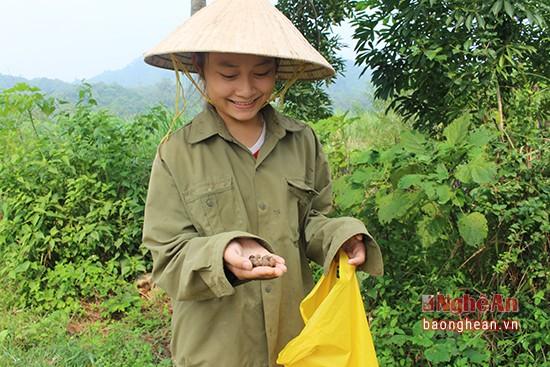 Mùa lượm hạt dẻ ở miền tây Nghệ An - ảnh 7