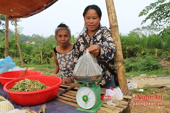 Mùa lượm hạt dẻ ở miền tây Nghệ An - ảnh 8