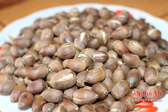 Mùa lượm hạt dẻ ở miền tây Nghệ An - ảnh 9