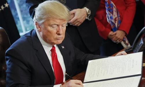 Vì sao thẩm phán Mỹ dừng lệnh hạn chế nhập cư của Trump? - ảnh 1