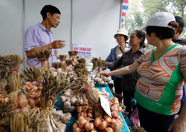 Hơn 300 gian hàng tham gia hội chợ nông sản   - ảnh 12
