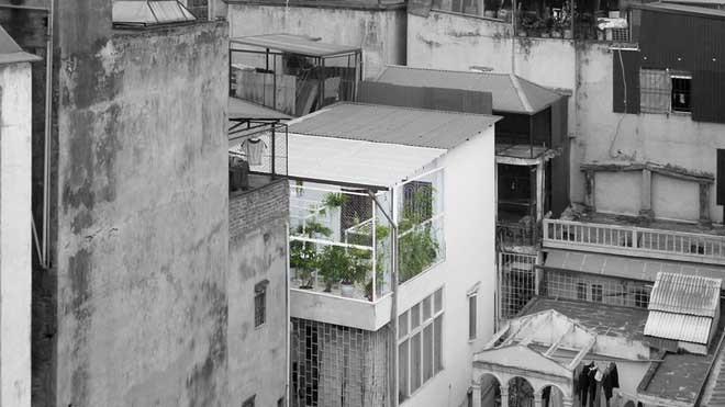 Khu 'vườn sinh thái' đặc biệt trên nóc nhà giàu Hà Nội - ảnh 1