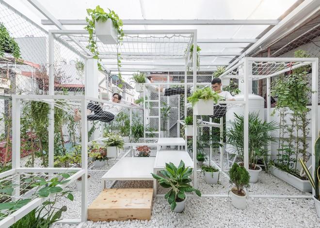 Khu 'vườn sinh thái' đặc biệt trên nóc nhà giàu Hà Nội - ảnh 2