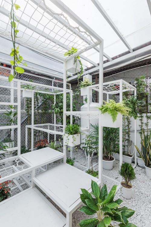Khu 'vườn sinh thái' đặc biệt trên nóc nhà giàu Hà Nội - ảnh 3