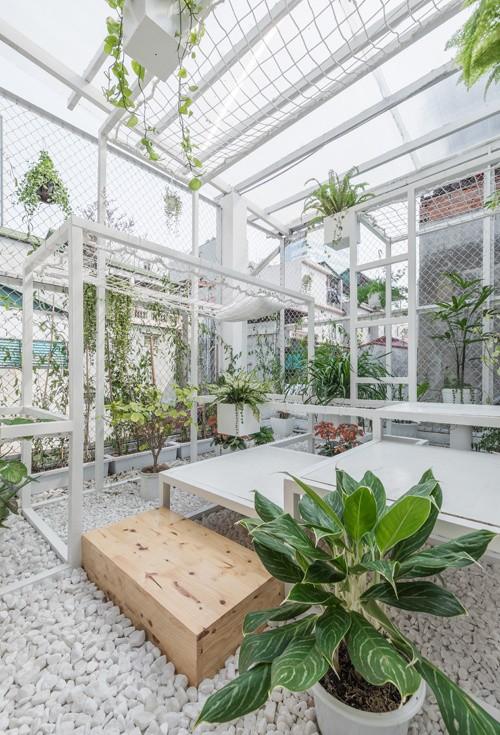 Khu 'vườn sinh thái' đặc biệt trên nóc nhà giàu Hà Nội - ảnh 4