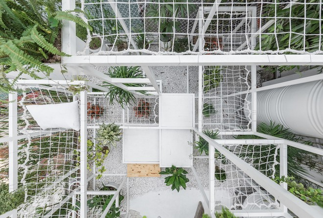Khu 'vườn sinh thái' đặc biệt trên nóc nhà giàu Hà Nội - ảnh 5