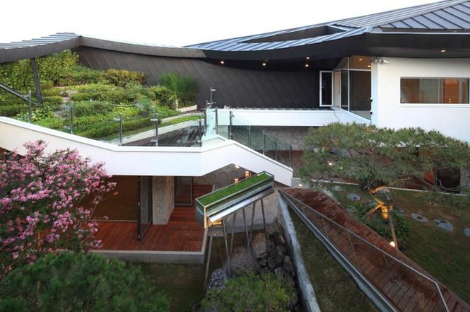 Khu vườn mênh mông giữa nhà của đại gia xứ Hàn - ảnh 4