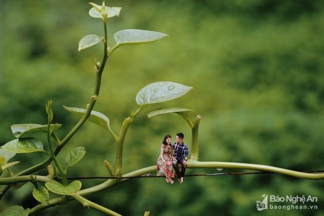 Độc đáo bộ ảnh cưới 'tí hon' của cặp đôi ở Nghệ An - ảnh 2
