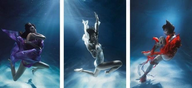 Những bức ảnh dưới nước đẹp mê hồn - ảnh 16