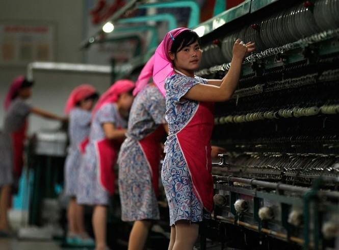 Nữ công nhân nhà máy sữa đang tích cực làm việc để chào mừng lễ kỷ niệm