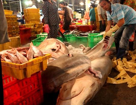Mỗi ngày, chợ đầu mối Bình Điền có hàng trăm chủng loại thủy hải sản khác nhau được nhập về. Tất cả đều được tiêu thụ trong ngày nên ban quản lý chợ hoặc Chi cục Quản lý chất lượng và nguồn lợi thủy sản TP HCM phát hiện chất cấm thì cũng đã muộn