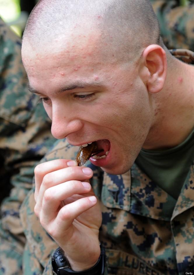 Lính Mỹ luyện uống máu rắn, ăn côn trùng - ảnh 2