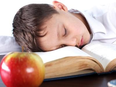 Ngủ ngay sau khi học giúp cải thiện điểm số - ảnh 1