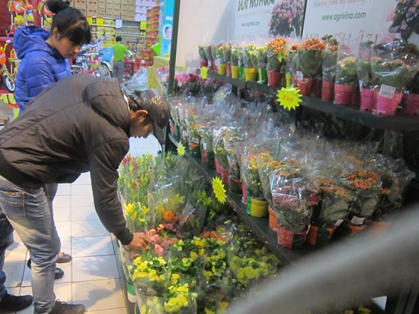 Hoa tươi là món quà đầy ý nghĩa trao gửi yêu thương