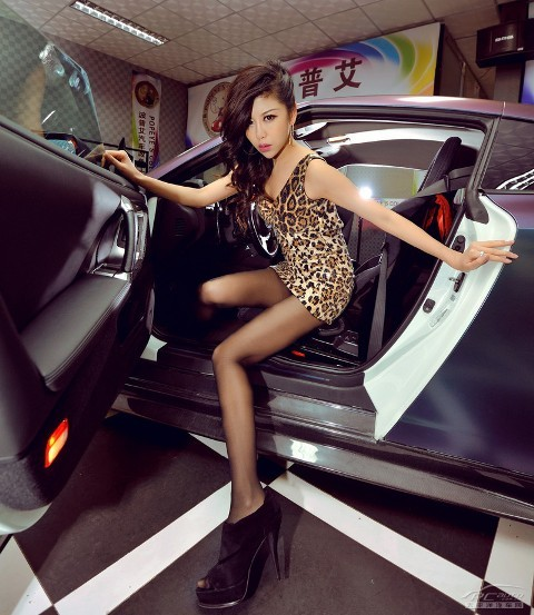 'Báo gấm' tạo dáng bên Nissan GTR - ảnh 3