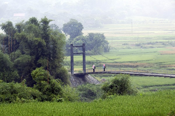 Mù Cang Chải là một huyện vùng cao, cách thành phố Yên Bái khoảng 180km, có trên 90% số dân là đồng bào dân tộc Mông sinh sống.