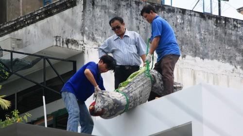 Nạn nhân đang được đưa xuống từ tầng thượng