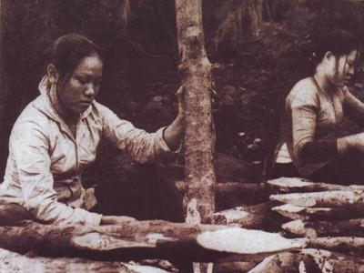 Đại đội 304, 317 TNXP vót cọc tiêu dẫn xe qua Truông Bồn (1968). Ảnh: T.L