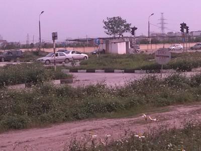 Một bãi tập xe ở Hà Nội, cỏ mọc hoang, biển báo tạm bợ. Ảnh: Thành Vinh