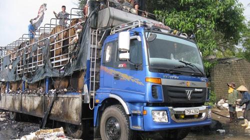 Toàn bộ giấy cuộn trên xe tải bị cháy rụi - Ảnh: Xuân Bảy (Tuổi Trẻ)