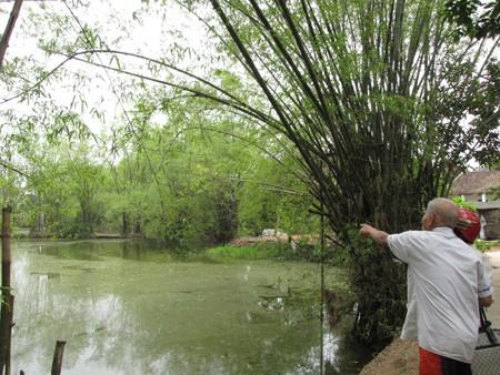 Cụ ông H.V.L chỉ cho phóng viên ao thiêng, nơi có rùa thần bị ăn thịt. Ảnh: Trường Phong.