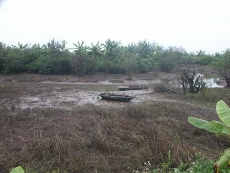 Toàn bộ tôm, cua, cá, chuối tiền tỉ trong đầm của gia đình ông Vươn bị tháo nước rồi cướp vét sạch.