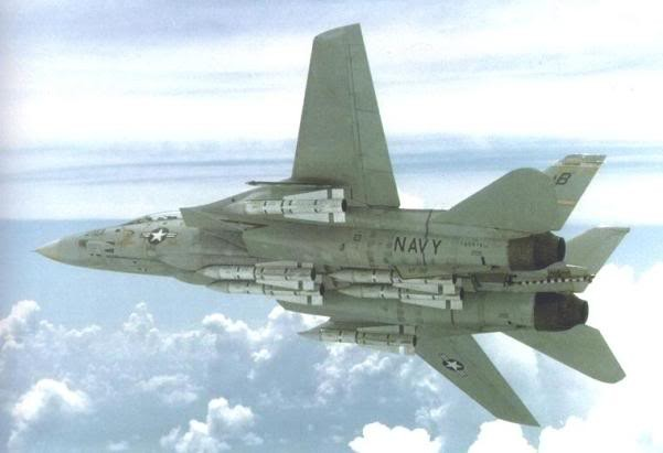 Máy bay tiêm kích phòng thủ hạm đội F-14A Tomcat mang đầy đủ cơ số đạn tên lửa đối không tầm xa AIM-54A theo cấu hình tuần phòng đối không (Photo of US DOD)