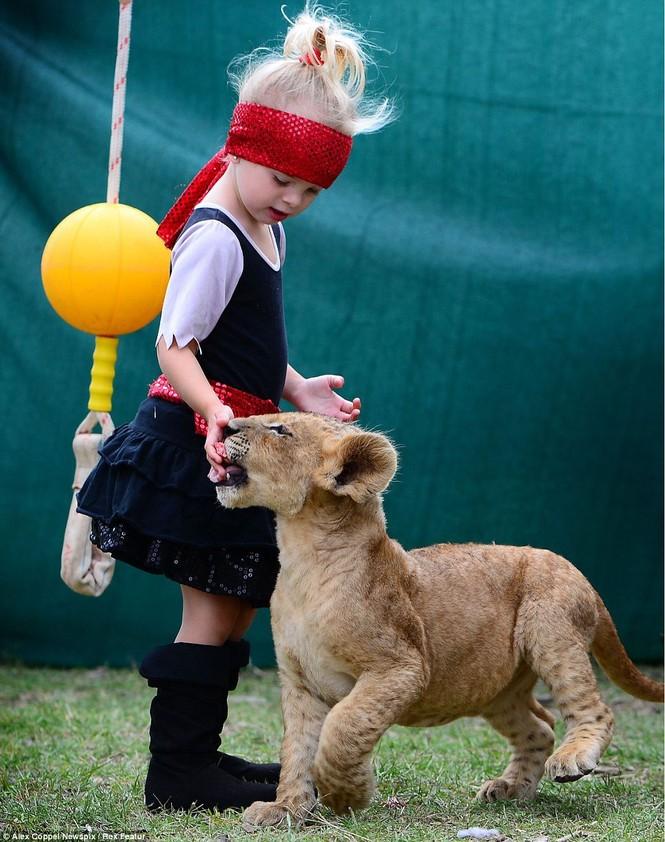 Em bé chơi cùng sư tử - ảnh 6